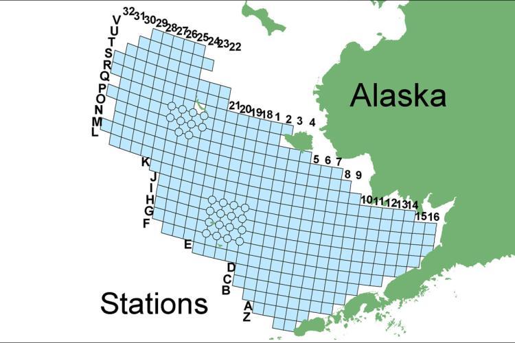 Alaska_Eastern-Bering-Sea-Water-Column.jpg