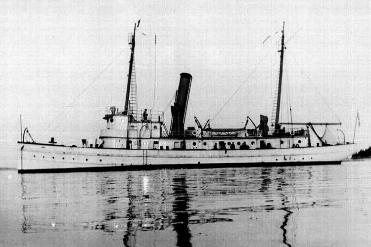 albatross-ii.png