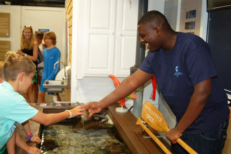Staff interacting with visitors at the touch tank.