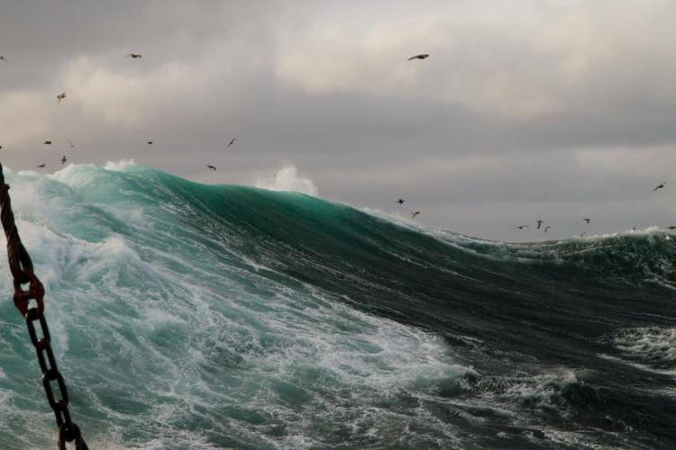 Blog_Free-Time-is-Dream-Time_sea-swell.jpg