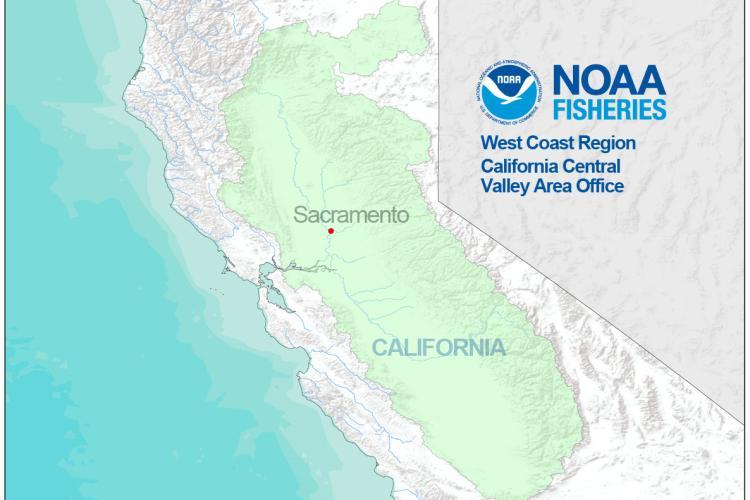 California Cental Valley Office.jpg