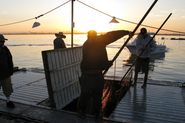 4000x3000-Bait-Barge-SWFSC-NOAA-JPG