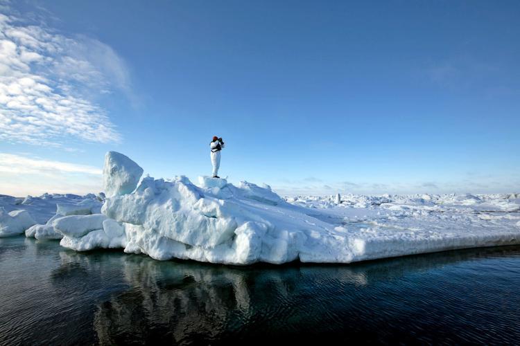 icesealecology_JML_3832_lg-retouched.jpg