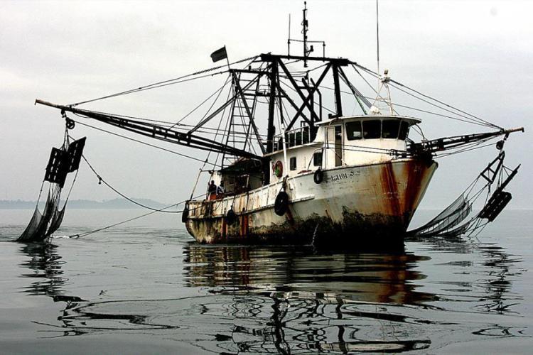 illegal-fishing-Gabon-2011.jpg