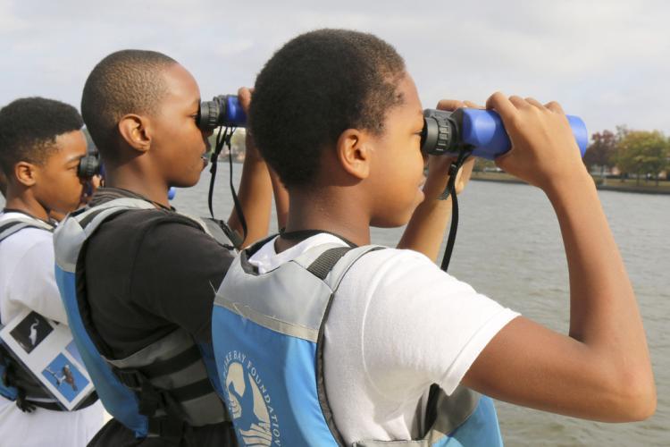 NEMO_Pic2_Binoculars.jpg