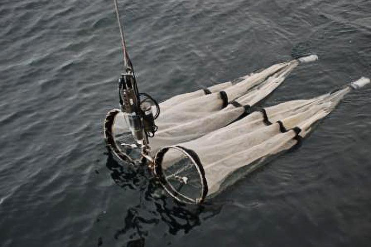 Oceanography_Alaska_Bongos.jpg