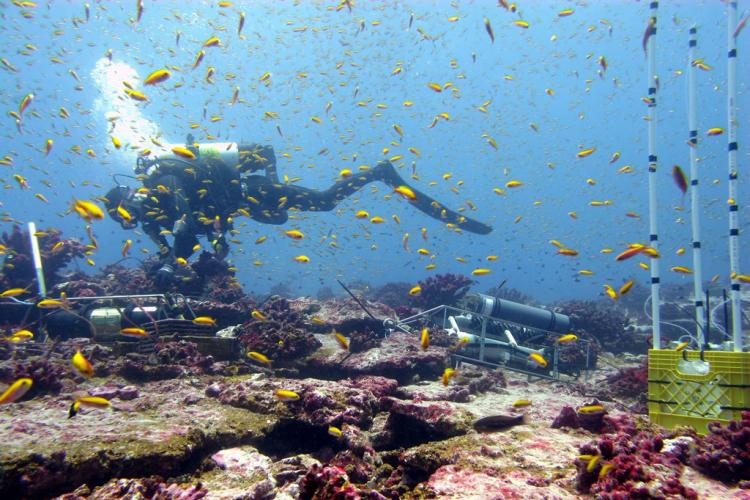 pacific_islands_ecosystem_science.jpg