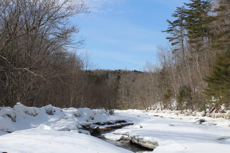 Snow covered river in Maine