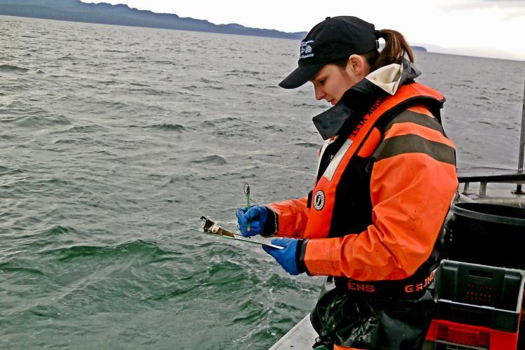 Southeast_Alaska_Coastal_Monitoring.jpg