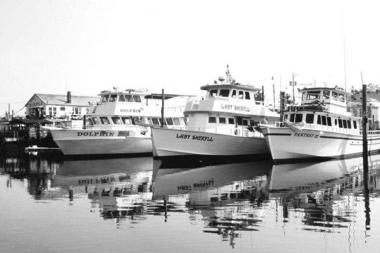 SS_ForHire_headboats.jpg