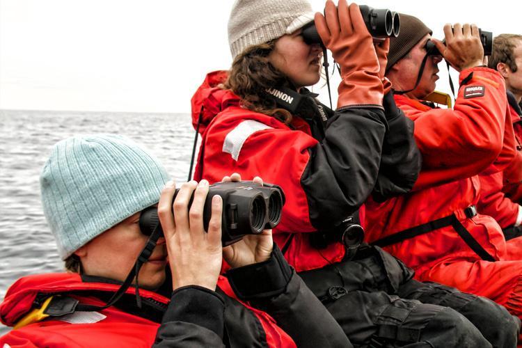 Steller Sea Lion Vessel-based Studies.jpg