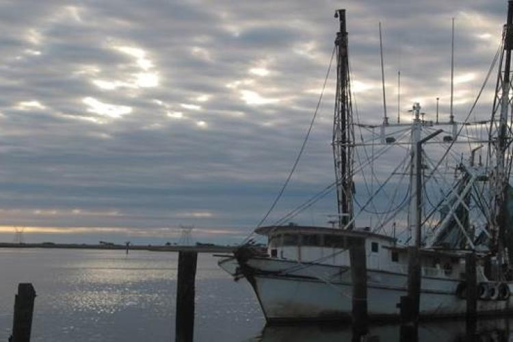 vessel-pilings-dock.jpg