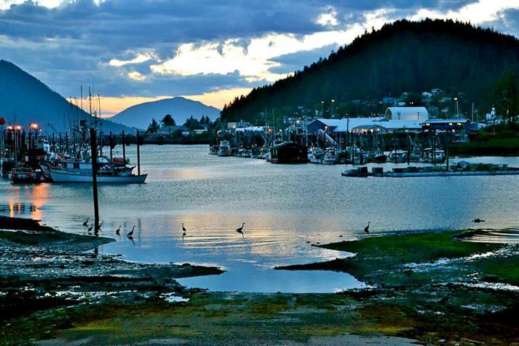 Wrangell Harbor.jpg