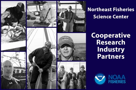 Northeast Fisheries Science Center cooperative research industry partners graphic with 7 photos of fishermen.