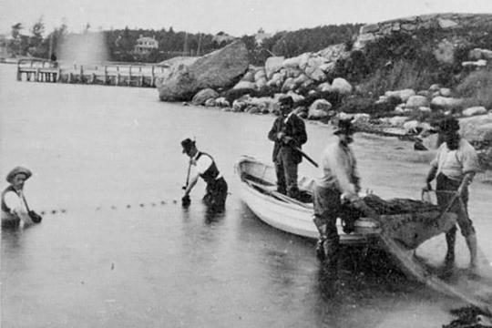 The first U.S. fish commissioner Spencer Baird and colleagues conducting research in Little Harbor, Massachusetts.