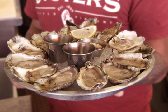 Platter of oysters on the half shell.