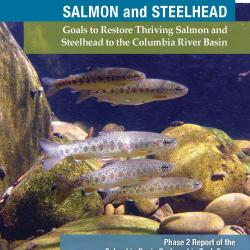 Cover of the Columbia Basin Partnership Phase 2 Report, A Vision for Salmon and Steelhead: Goals to Restore Thriving Salmon and Steelhead to the Columbia River Basin
