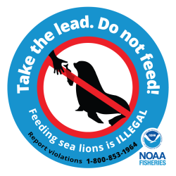 Do Not Feed Steller sea lions logo