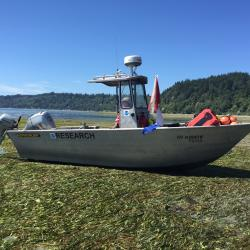 Figure 8 shows our 21' research vessel sitting in a large eelgrass bed at low tide in Puget Sound, WA.