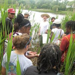 Students on a field trip to a local marsh.