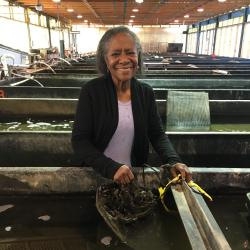 Research geneticist Sheila Stiles holds a bag of mussels in the tank farm at the Milford Laboratory in Milford, CT.