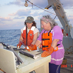 Women on deck of ship.