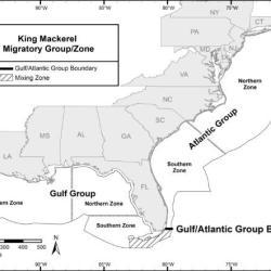Gulf King Mackerel Southern Zone Map