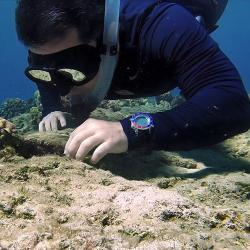 Diver exploring close to coral reef in the ocean.