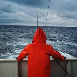 Stock photo of fisherman's back on boat.