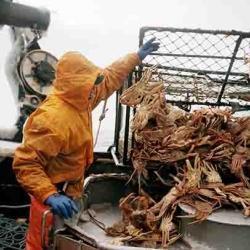 Bering Sea crab fisherman, Chris Flip.