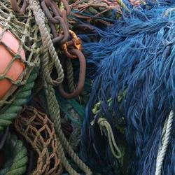 online-services-fish-gear-blue-mandy-lindberg.jpg