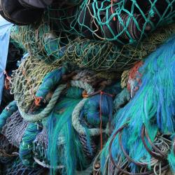 trawl-nets-sf-contact-card.jpg