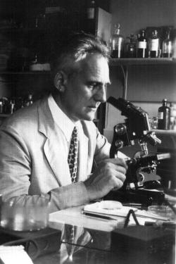 Paul Galtsoff at work, 1937/