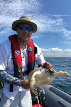 Canh Nguyen holds a juvenile loggerhead sea turtle during permitted work testing a turtle excluder device off the coast of Panama City, Florida.