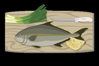 Colored illustration of a Hawaiian yellowtail fish (kamapachi).