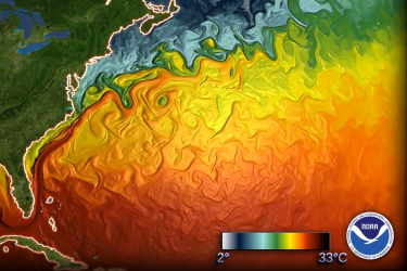 Simulated sea surface temperature for November for the east coast of the United States showing the warmer temperatures to the south, colder temperatures to the north, separated by the Gulf Stream.