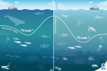 Illustration showing the concept of an ecosystem regime shift in two panels. The panel on the left represents a current ecosystem regime and the panel on the right represents the same ecosystem after a regime shift fundamentally changes it. The benthic habitat and animal species shown in each panel are different, illustrating the differences between the two regimes. A line representing Ecosystem State has a valley for each regime and a peak representing a critical threshold separating each regime, which de