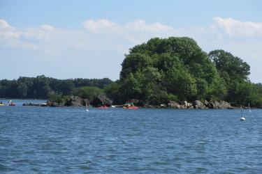 Approximately five kayakers paddle around a cove just offshore from Greenwich, Connecticut