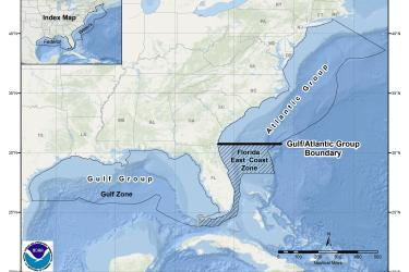 This is a map of cobia migratory group zones in the Gulf of Mexico and South Atlantic Region.