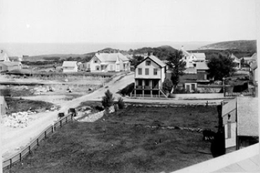 : A black and white photo of West Street, now called Albatross Street, showing a dirt road and houses on either side with a large grassy area or lawn in front of several houses.
