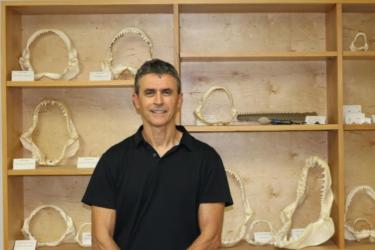 Enric Cortés in front of a display of shark jaws.