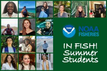 IN Fish graphic, 2021 summer students.