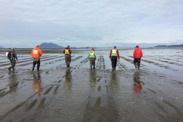 Six aquaculture workers walking through mud flats.