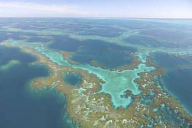 """An aerial image of the reticulated coral reefs referred to as the """"maze"""" at Manawai (Pearl and Hermes Atoll), a high-density debris accumulation hotspot."""