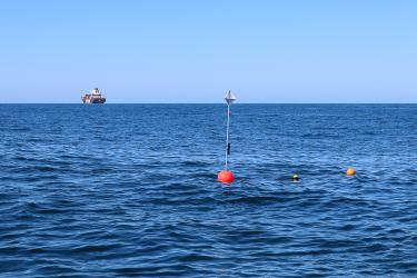 Photograph of a drifting acoustic spar buoy recorder (DASBR) deployed during the ACCESS 2021 cruise. Credit: Shannon Rankin.