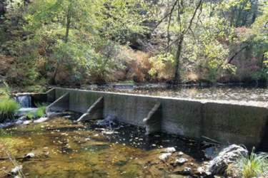 An upriver view of the Lovelace dam in Applegate, Oregon