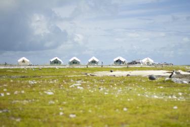 5184x3456-Monk-Seal-Field-Camp.jpg