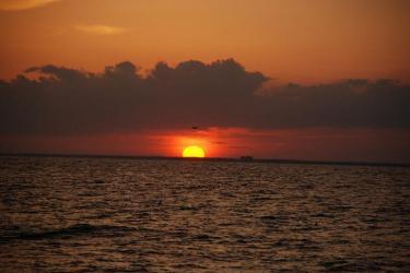 750x500-hms-sunset-sf.jpg