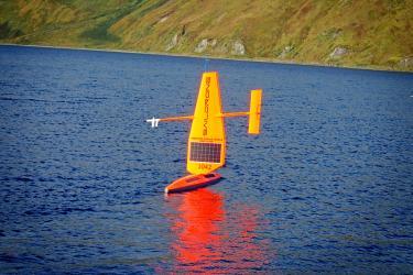 ASAMM-Blog-CrabandSaildrone (2).JPG
