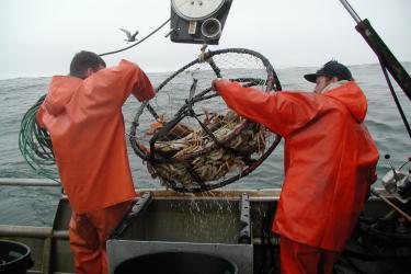 crabfishing.jpg